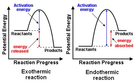 energy diagram for endothermic reaction important questions and answers energetics of chemical
