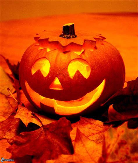 jack pumpkin halloween pumpkin