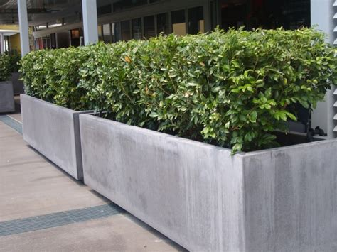 Concrete Planter by 13 Concrete Planters Award Winning