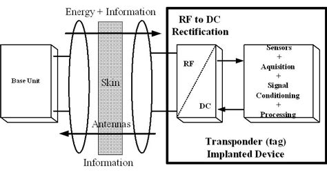 schottky barrier diode sbd implementation of schottky barrier diodes sbd in standard cmos process for biomedical