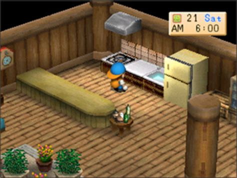 Harvest Moon Kitchen by Cooking Harvest Moon Back To Nature Guide