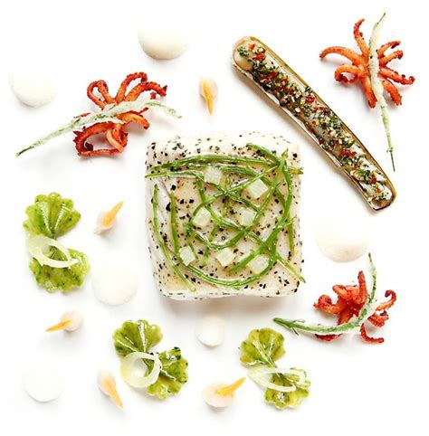Celery Extract By Sea Quill 471 best images about poisson et les coquillages on scallops sea bass and lobsters