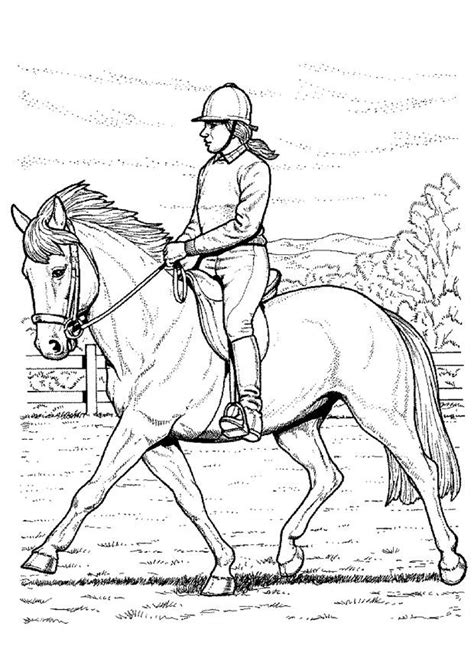 coloring pages of horse riding coloring page horse back riding img 10274