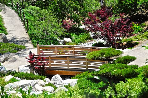 San Diego Japanese Garden by January 31st 2015 San Diego Photo Journal Japanese F