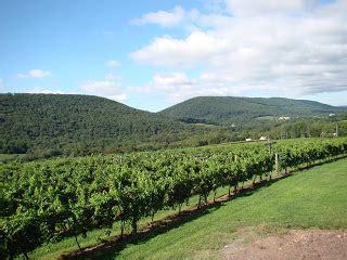benignas winery lighting of the vineyard family at the heart of pa s benigna creek winery