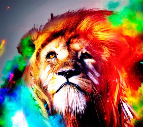wallpaper colorful lion download colourful lion 1440 x 1280 wallpapers 3017725