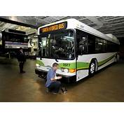 SARTA Goes Green With Hybrid Buses  News The Repository