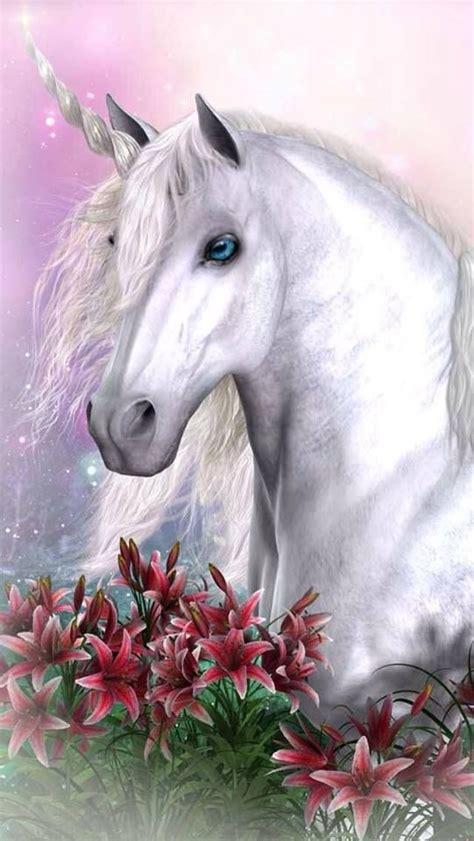 imagenes de unicornios brillantes m 225 s de 1000 im 225 genes sobre unicornios en pinterest arte