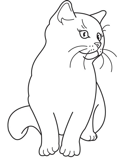 black and white coloring pages of cats realistic coloring pages of animals coloring home
