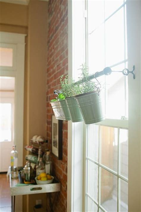 Hanging Herbs In Kitchen Window by 1000 Ideas About Window Herb Gardens On Herbs