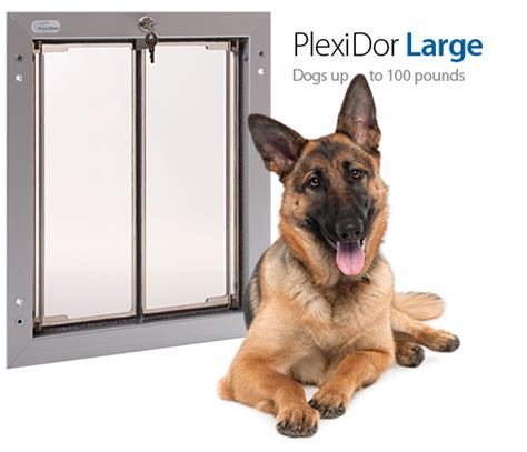 Electronic Doors For Large Dogs by Pet Door Through Wall Large Door