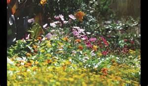 jardins des papillons hautes vosges tourisme g 233 rardmer