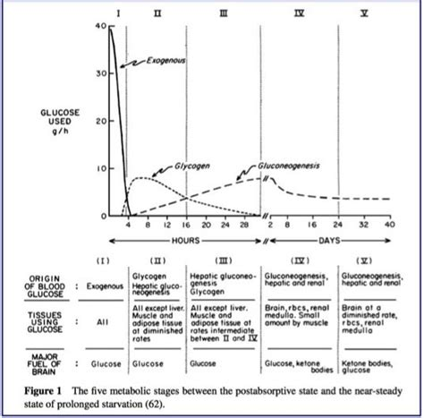 fasting  growth hormone physiology part  intensive
