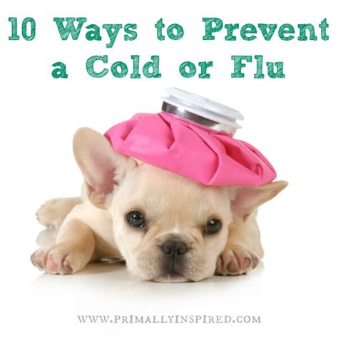 10 Tips On Avoiding Cold by 10 Tips To Prevent Getting Sick Or Shorten A Cold Or Flu