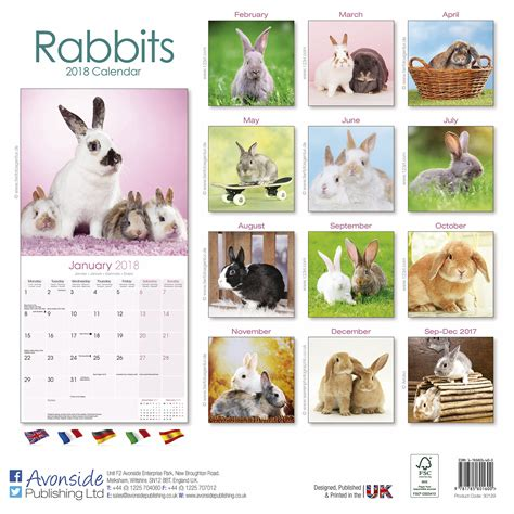 rabbits calendar 2018 pet prints inc