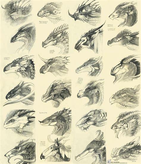 design art types dragon head designs design idea anatomy wyvern heads