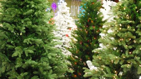 city provides christmas tree recycling program other