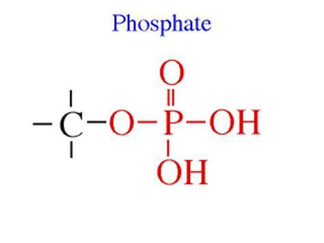 Murah Pupuk Organik Untuk Pertumbuhan Tanaman Buah pupuk starphos b fosfat alam 50 kg pt dharma ayu tani