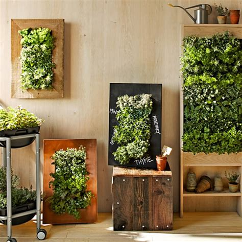 easy ways  create  vertical garden wall   home