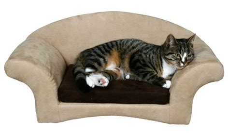 cat couch bed cat sofa bed my future farm and pets pinterest