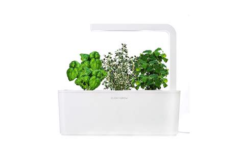 smart herb garden smart herb garden 187 gadget flow