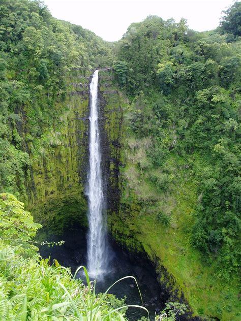 aloha haircuts hilo hours lori villardi and calvin yoran s wedding website