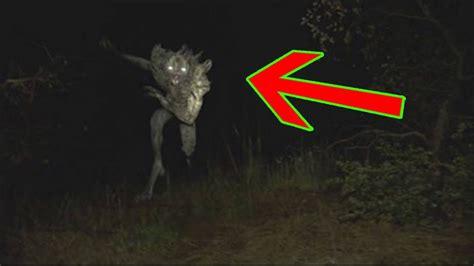 imagenes increibles de la vida real 7 chupacabras reales captados en c 225 mara youtube