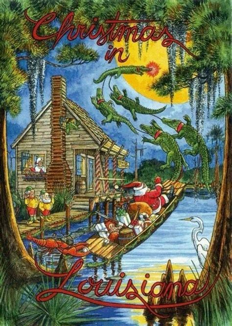 bayou a cajun novel cajun books volume 8 books 17 best cajun wish list images on