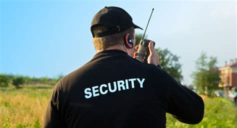 protection security  investigation full time program georgian college