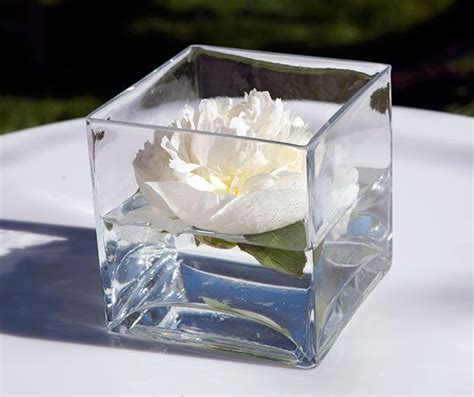 Square Glass Vases For Centerpieces by 25 Best Ideas About Square Vase Centerpieces On