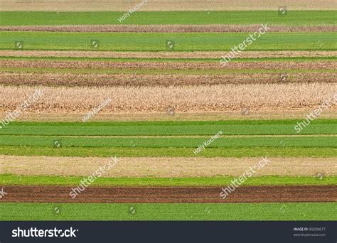 field pattern en francais field patterns plowedharvested rows pennsylvania farm