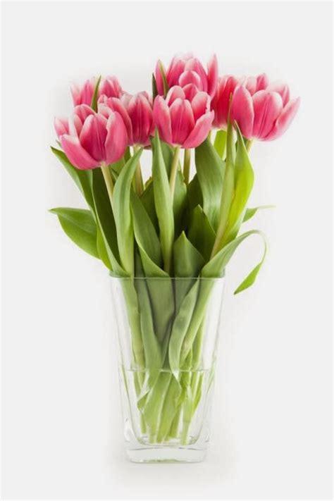 gambar bunga valentines day makna bunga valentine foto