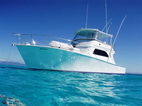 moana boat au moana iii fishing charters fishing cairns