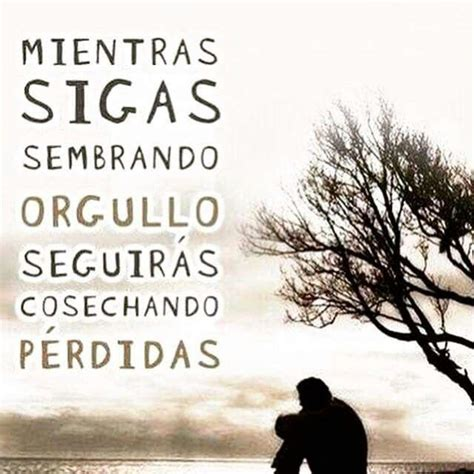 imagenes y frases unicas frases unicas imagui