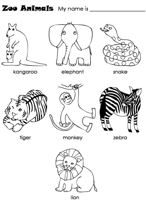 printable zoo animals worksheets free coloring pages of zoo animals preschool