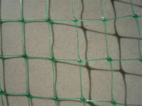 climbing plant support mesh plastic plant support netting with cheap price buy