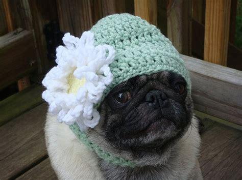 pugs hats pug hats 1funny