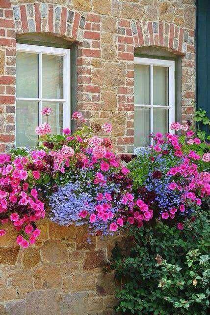 fioriere per davanzale finestra oltre 1000 idee su fioriere per finestra su