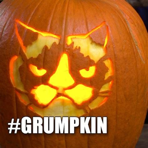 Meme Pumpkin Stencil - 17 best images about grump o lantern on pinterest