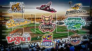 Minor League Baseball Minor League Baseball S Best Team Name Vote To Decide The