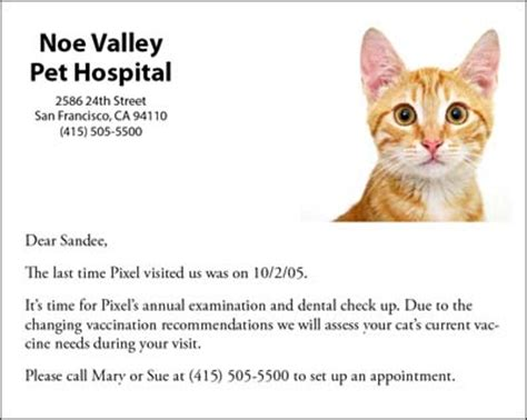 veterinary reminder card template automating data handling indesignsecrets indesignsecrets