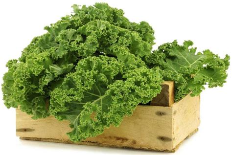 alimenti ricchi di manganese alimenti vegetali pi 249 ricchi di nutrienti