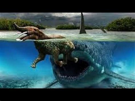 Imagenes Reales De Un Megalodon | 191 megalodon real o no 161 toda la verdad sobre el megalodon