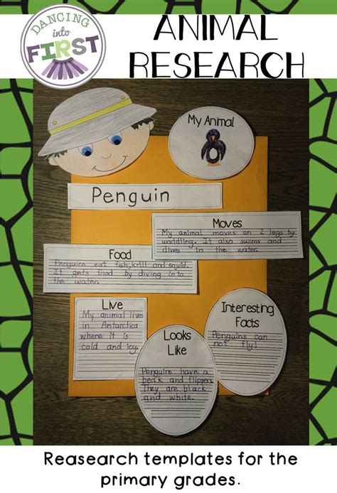 information report template for primary students 17 best ideas about animal projects on report writing information report and