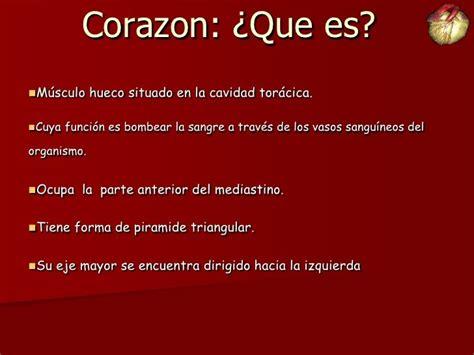 el corazan es un 17 best images about anatom 237 a del coraz 243 n on models tejido and interiors