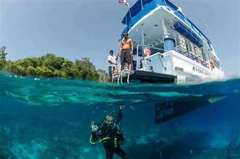 dive phuket scuba diving phuket thailand day tours diving in phuket