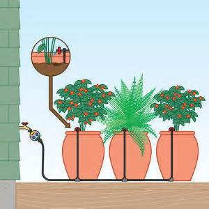 Patio Plant Watering System by Drip Kits For Pots Sunset