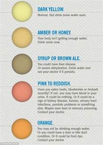 7 urine colors that reveal important things about your