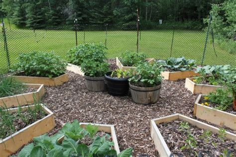 diy uniquely shaped raised bed gardens