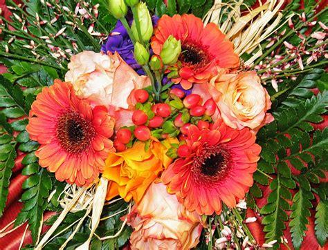 gambar bunga bunga buket bunga berwarna merah muda
